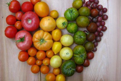 pomodori-verdi-lycoprozen